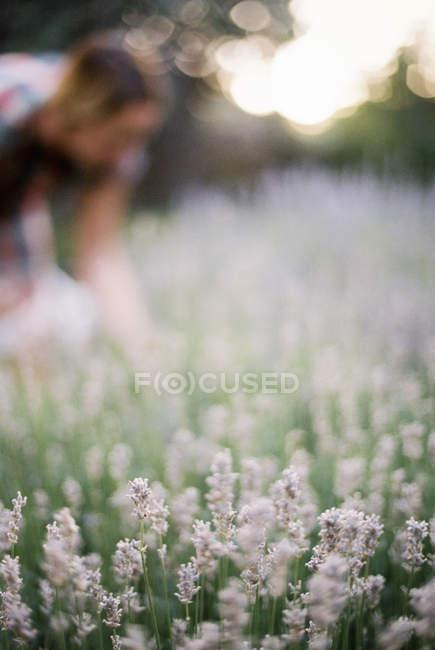 Femme de cintrage par un parterre de fleurs — Photo de stock