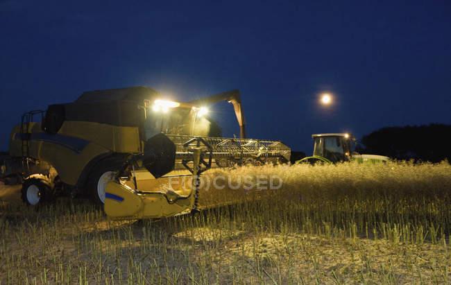Combine harvester and grain trailer working — Stock Photo