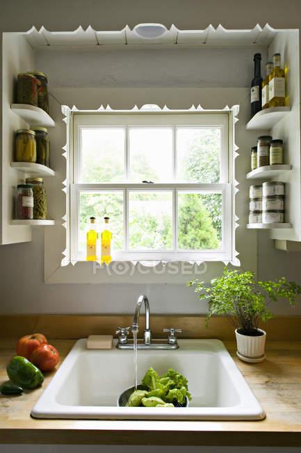 Finestra della cucina, con mensole e un lavandino tradizionale ...