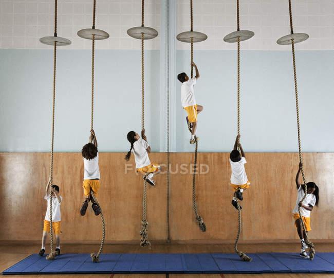 Група дітей, піднімаючись мотузки — стокове фото