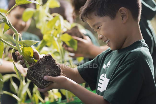 Bambini che imparano a conoscere piante e fiori — Foto stock