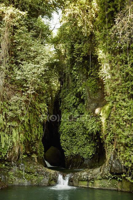 Cachoeira cascata na piscina. — Fotografia de Stock