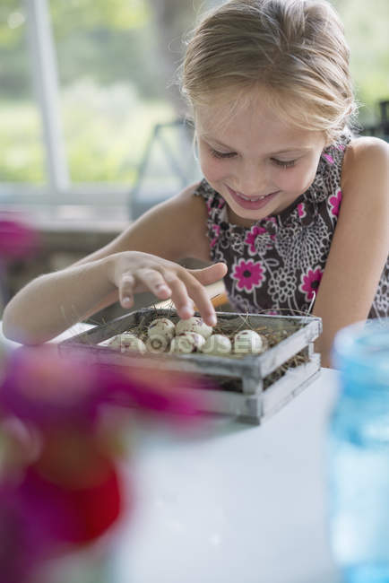 Girl with speckled bird eggs in a box. — Stock Photo