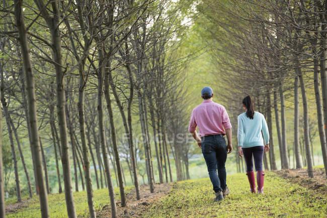 Couple walking between trees. — Stock Photo