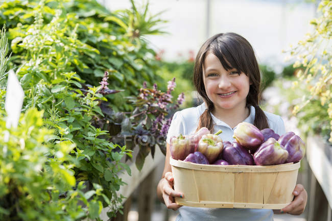 Girl with basket of bell peppers. — Stock Photo