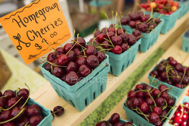 Displays of fresh Cherries. — Stock Photo