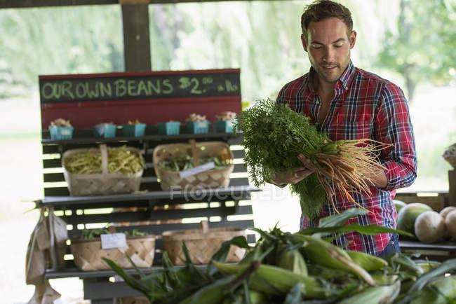 Hombre con manojos de zanahorias - foto de stock