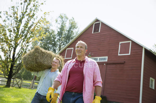 Men carrying hay on shoulders — Stock Photo