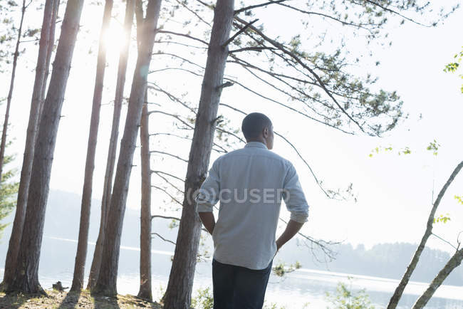 Man standing in the shade of pine trees — Stock Photo