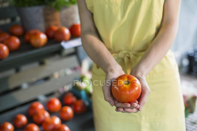 Woman holding a tomato. — Stock Photo