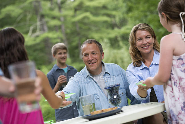 Outdoor family party and picnic. — Photo de stock