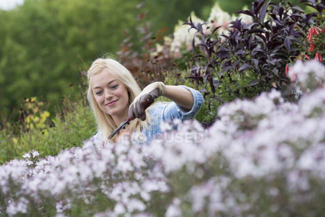 Woman working in flower nursery — Stock Photo