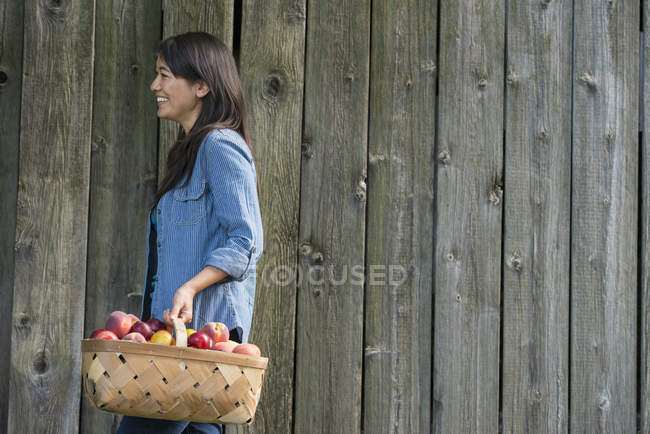 Woman with basket of freshly picked fruit. — Stock Photo