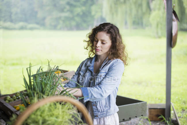 Woman sorting vegetables. — Stock Photo