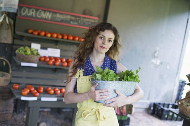 Femme tenant le basilic frais laisse. — Photo de stock