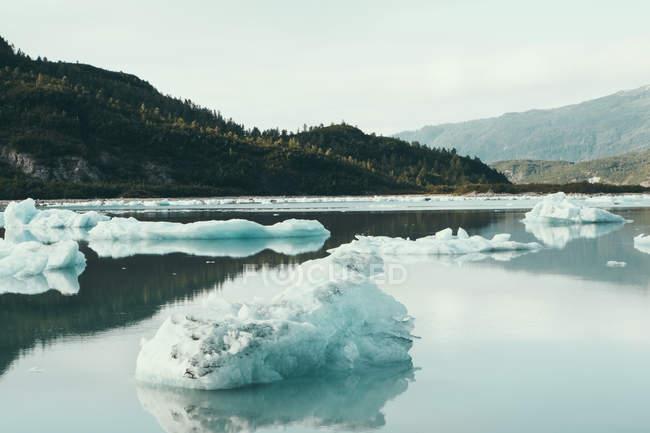 Vor der Küste schwimmende Eisberge — Stockfoto