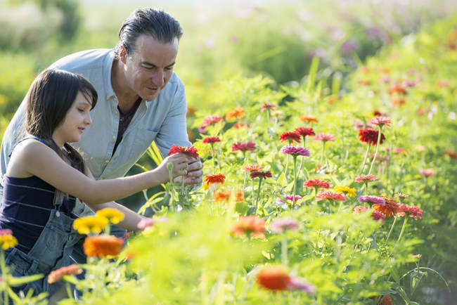 Man and a girl in a field of flowers. — Stock Photo