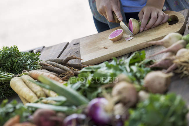 Person chopping freshly picked vegetables — Stock Photo