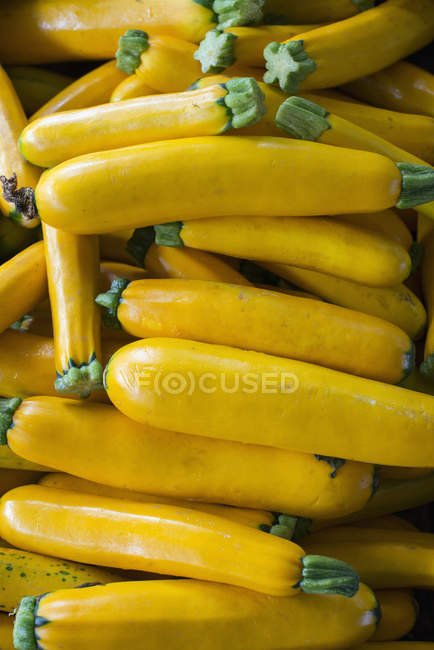 Tas de courgettes fraîches — Photo de stock
