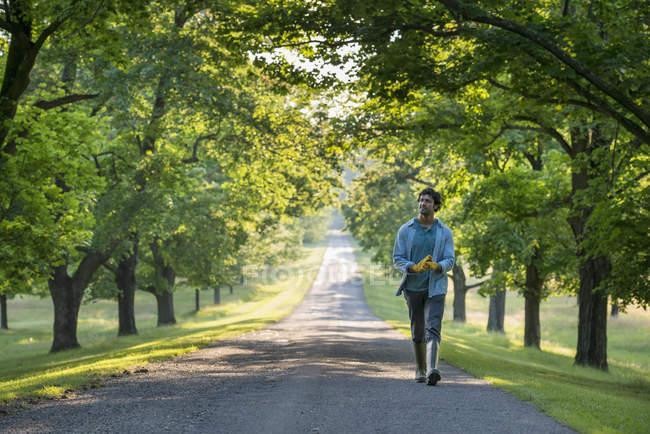 Человек, идущий по тропе — стоковое фото