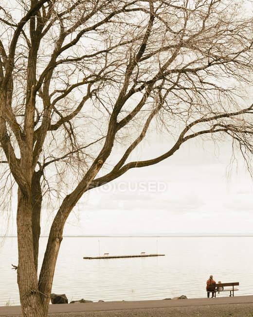Avó e criança sentados em um banco de parque — Fotografia de Stock