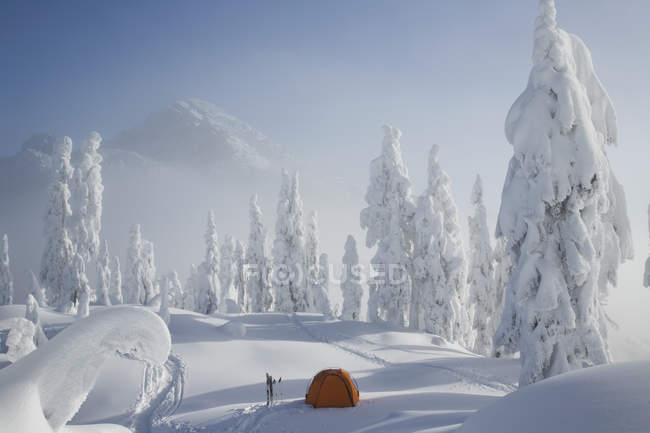 Orange tent sits on snowy ridge — Stock Photo