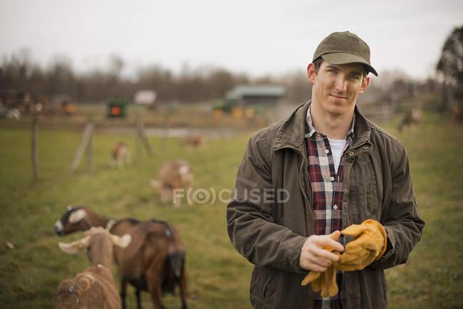 Männliche Landwirt neigende Ziegen — Stockfoto