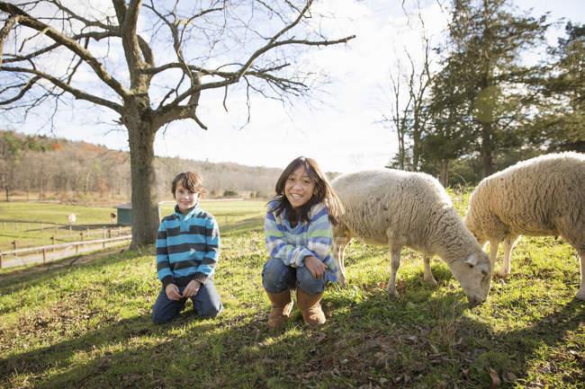Kinder in einer Koppel mit Schafen — Stockfoto
