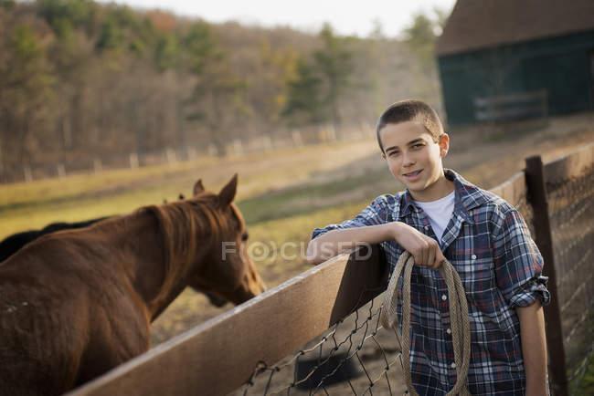 Хлопчик стоїть paddock кінь. — стокове фото