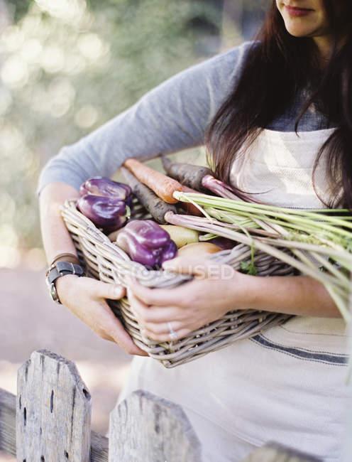 Woman in a vegetable garden — Stock Photo