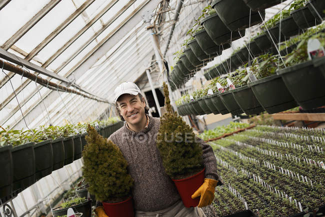Organic plant nursery glasshouse — Stock Photo