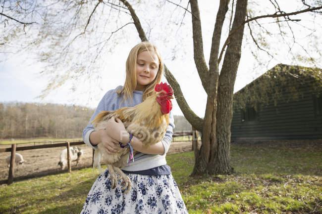 Ragazza che tiene un grande pollo — Foto stock