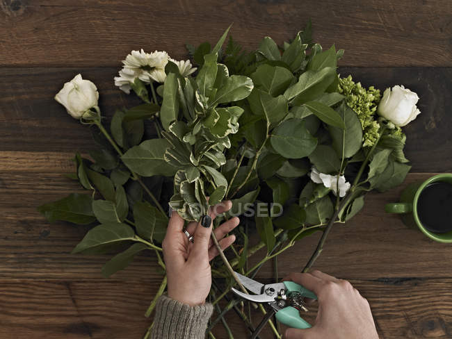 Woman holding secateurs and cutting flower stems — Stock Photo
