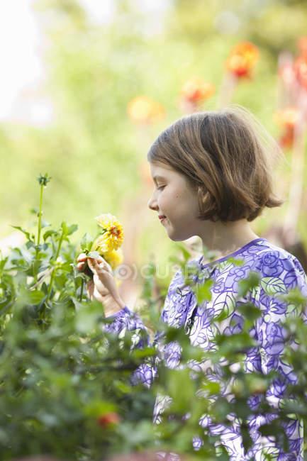 Jovem menina colhendo flores em um jardim. — Fotografia de Stock