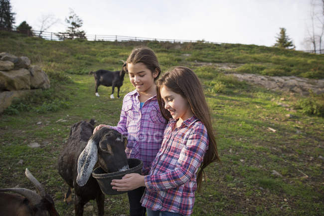 Young girls at an animal sanctuary. — Stock Photo