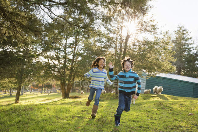 Children running in a paddock — Stock Photo