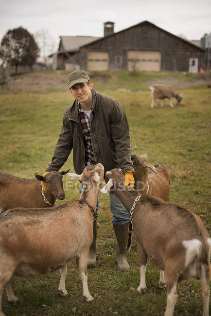 Tendendo caprinos agricultor masculino — Fotografia de Stock