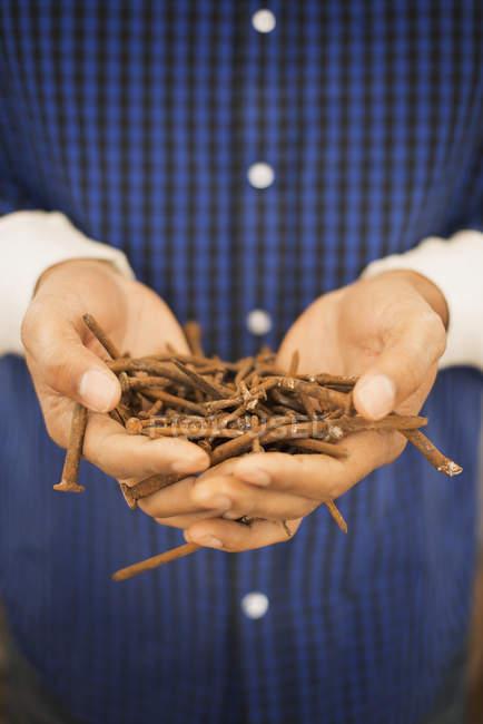 Man holding heap of metal nails — Stock Photo