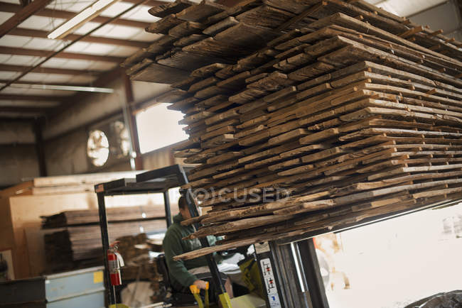 Environmentally responsible reclamation in a timber yard. — Stock Photo