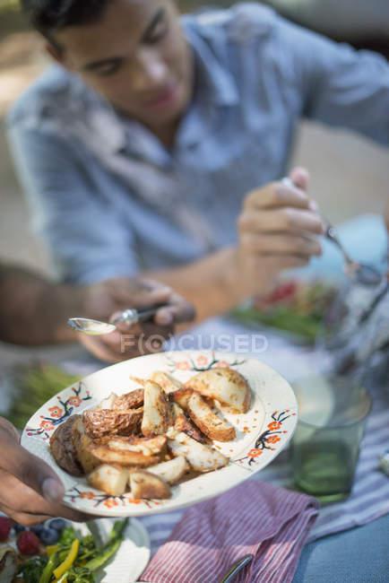 Сімейний пікнік їжі — стокове фото