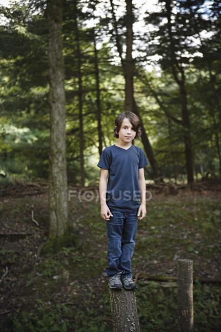 Ragazzo in piedi su un tronco d'albero stretta — Foto stock