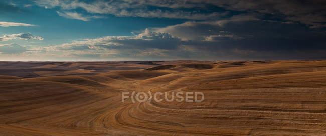 Farmland landscape, with ploughed fields — Stock Photo