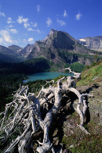 Glacier National Park — Stock Photo