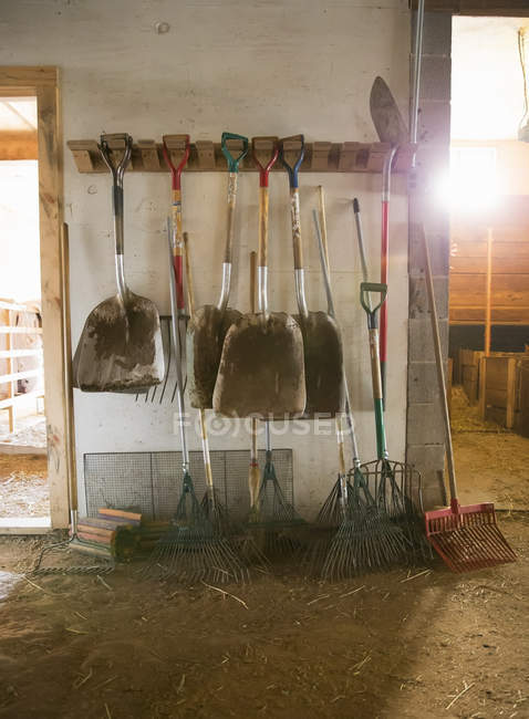 Hay rakes and boot scraper — Stock Photo