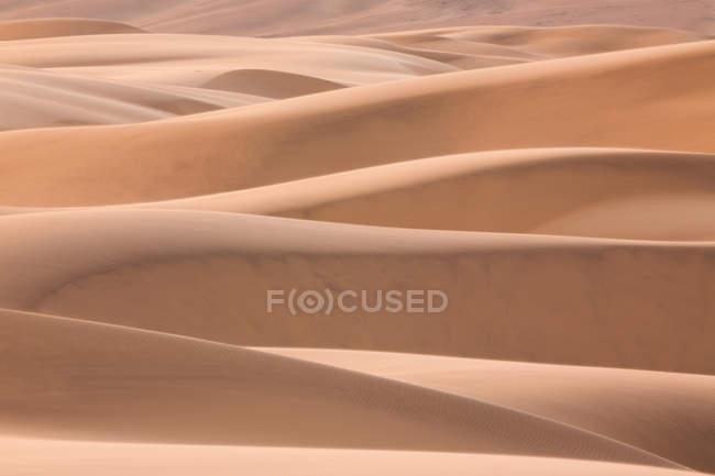 Dunes du désert du Namib — Photo de stock