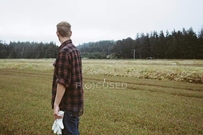 Man working on cranberry farm — Stock Photo