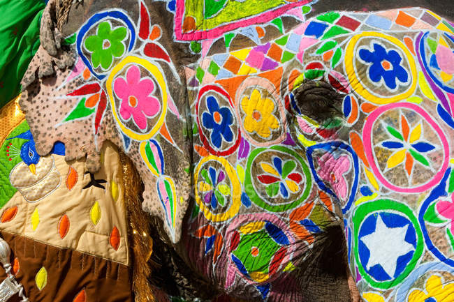 Elaborately adorned elephants during Holi — Stock Photo