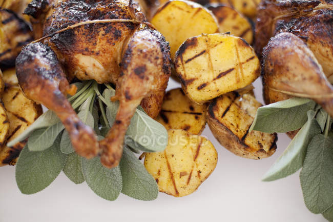 Bio pollo ruspante cotto — Foto stock