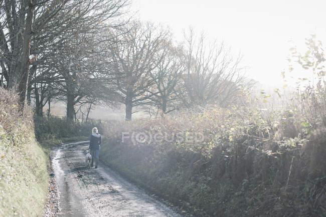 Mulher e um cachorro andando — Fotografia de Stock