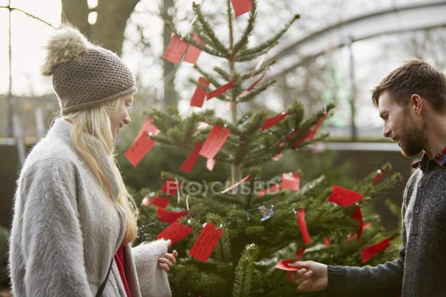 Woman choosing a traditional pine tree — Stock Photo